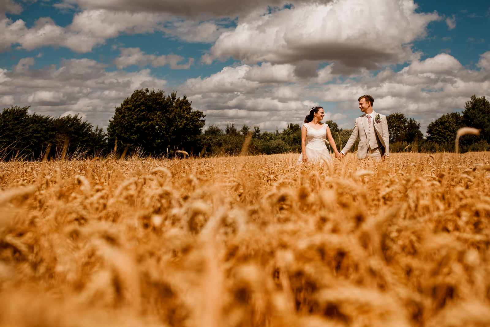 corn field with wedding couple
