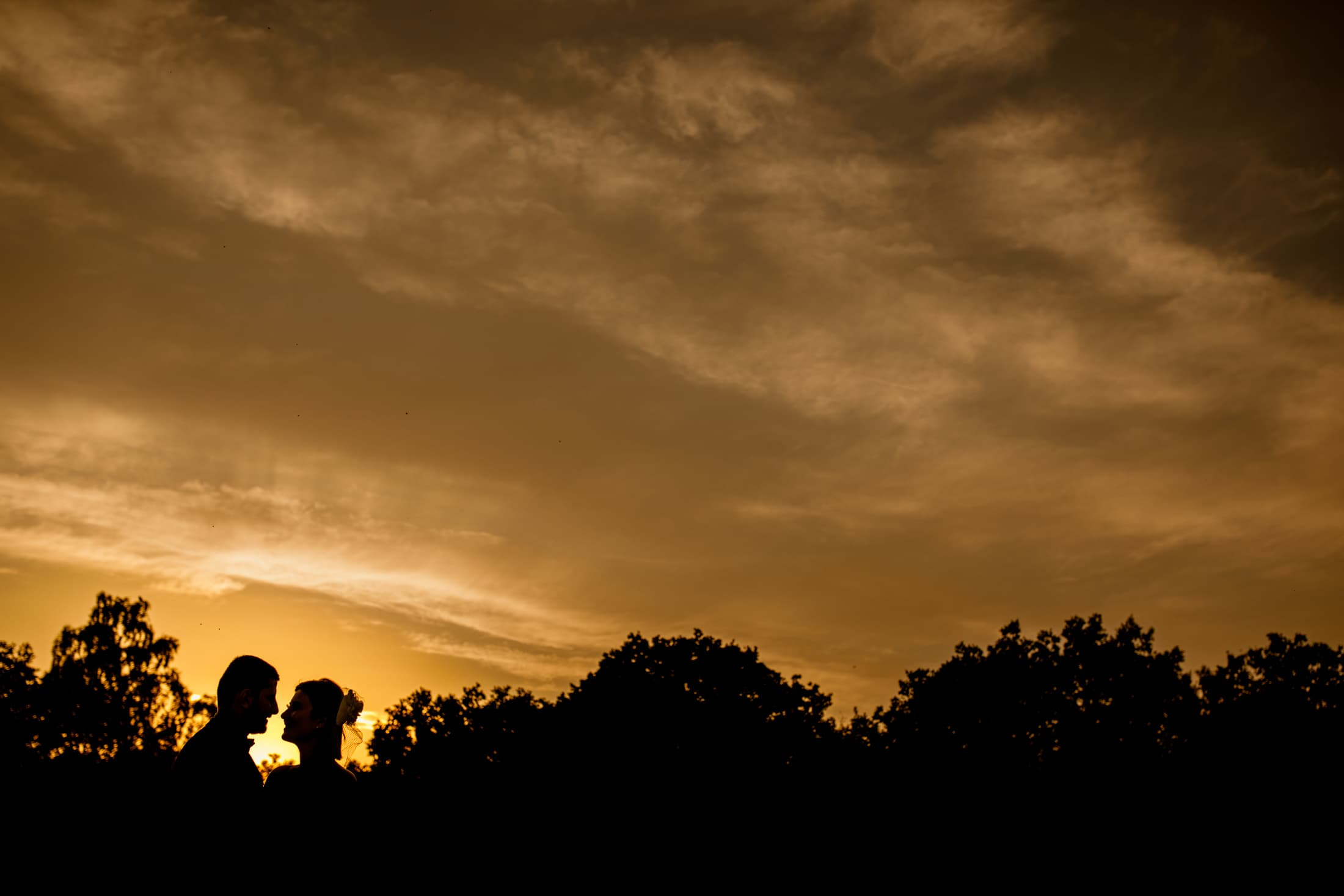 sunset wedding photography at burnham beeches