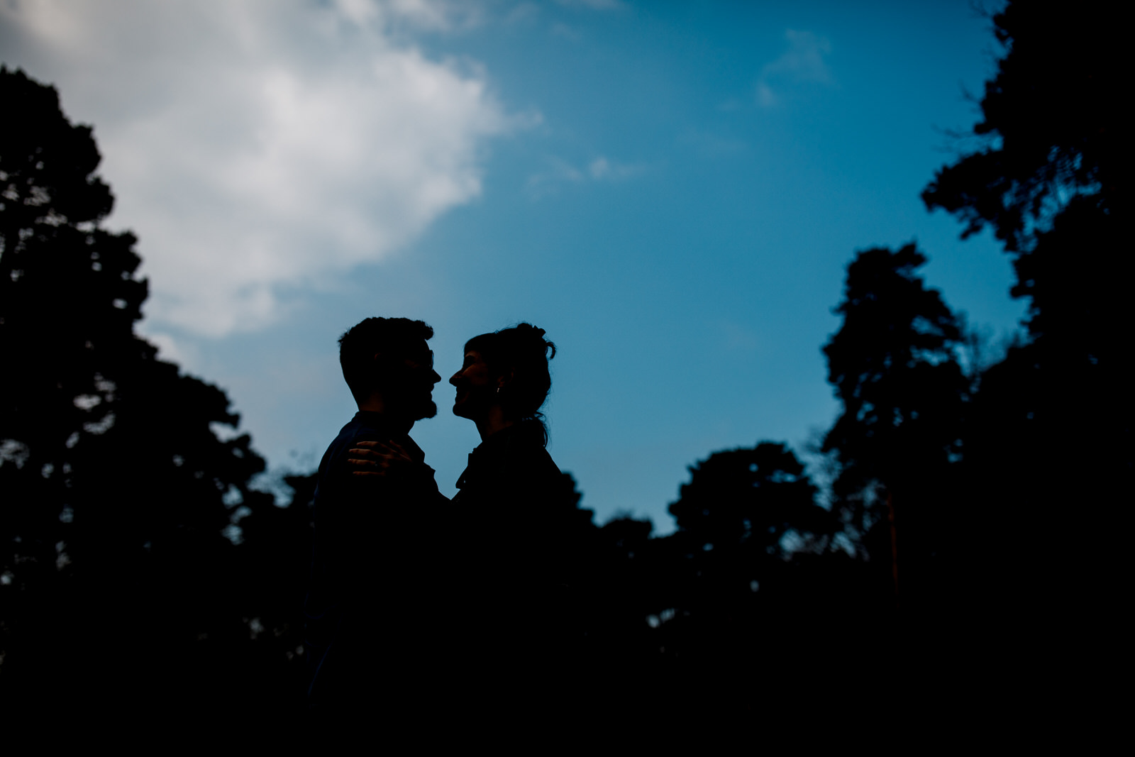 silhouette couple in park